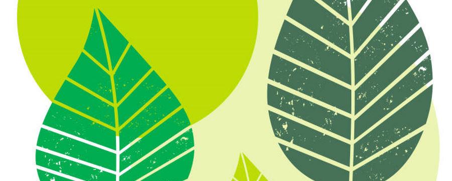 """""""Graphic Leaves"""" Thema -Horecavoordeel.com-"""